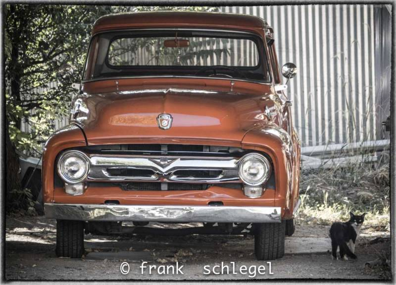 Truck_and_Cat_Las_Trampas